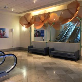 United Lounge, SFO International Terminal