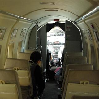IMGP3943 (Large)