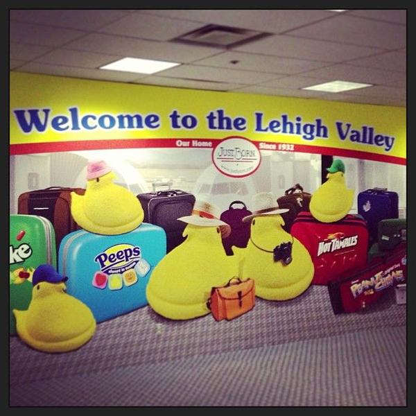 Peeps greet visitors at The Lehigh Valley International Airport @flylvia #lehighvalley #allentown #bethlehem #easton #airport #peep #peeps #pennsylvania #candy #travel #cute #justborn #mikeandike