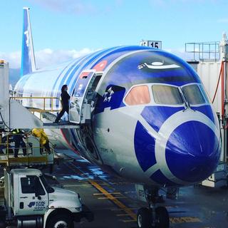 ANA Boeing 787-9 R2D2 Jet at SJC