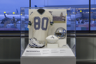 """Installation view of """"The Nation's Game: A History of the National Football League"""""""