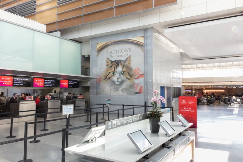 """Installation view of """"Caticons: The Cat in Art"""""""