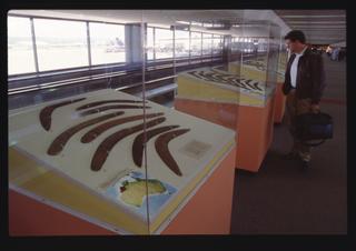 "Installation view of ""Boomerang"""