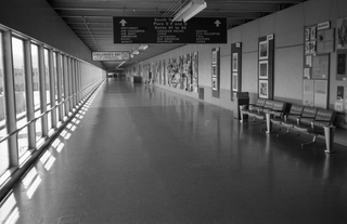 negative: San Francisco International Airport (SFO), South Terminal interior