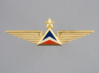 flight officer wings: Delta Air Lines