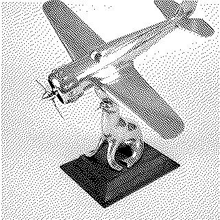 tabletop airplane with walrus