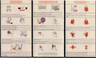 safety information card: AeroMexico, Douglas DC-8-51