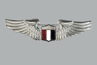 uniform military wings