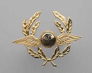 flight officer cap badge: AeroMexico