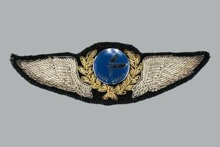 flight officer wings: Air Siam